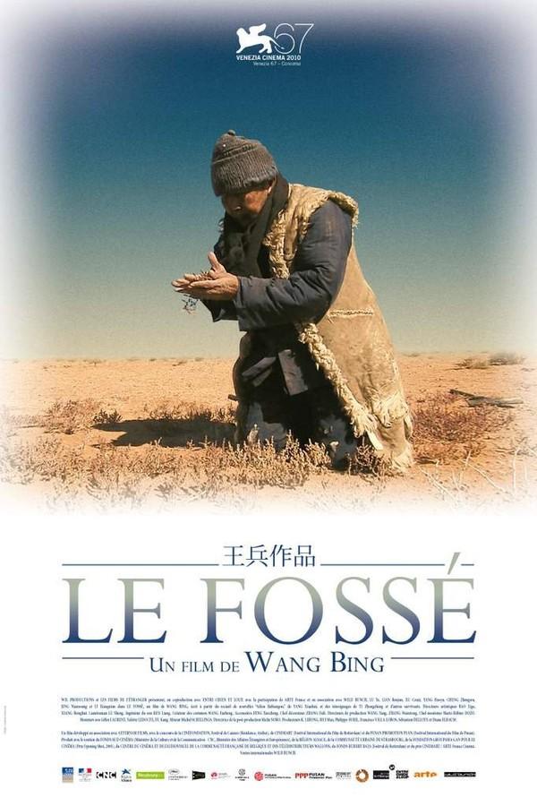 Le Fossé - Cinéma étrange et bizarre, de Ygor Parizel.